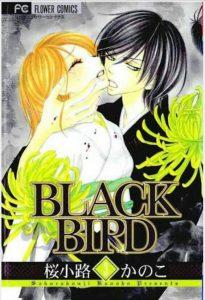 BLACKBIRD3巻あらすじ