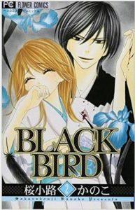 BLACKBIRD2巻あらすじ
