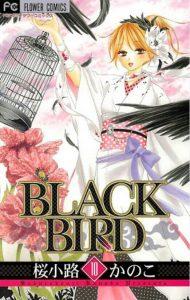 BLACKBIRD10巻あらすじ