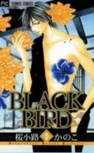 BLACKBIRD9巻あらすじ