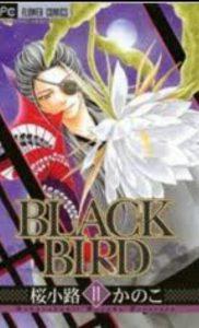 BLACKBIRD11巻あらすじ