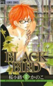 BLACKBIRD12巻あらすじ