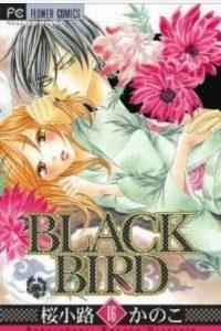 BLACKBIRD16巻あらすじ