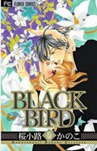 BLACKBIRD15巻あらすじ